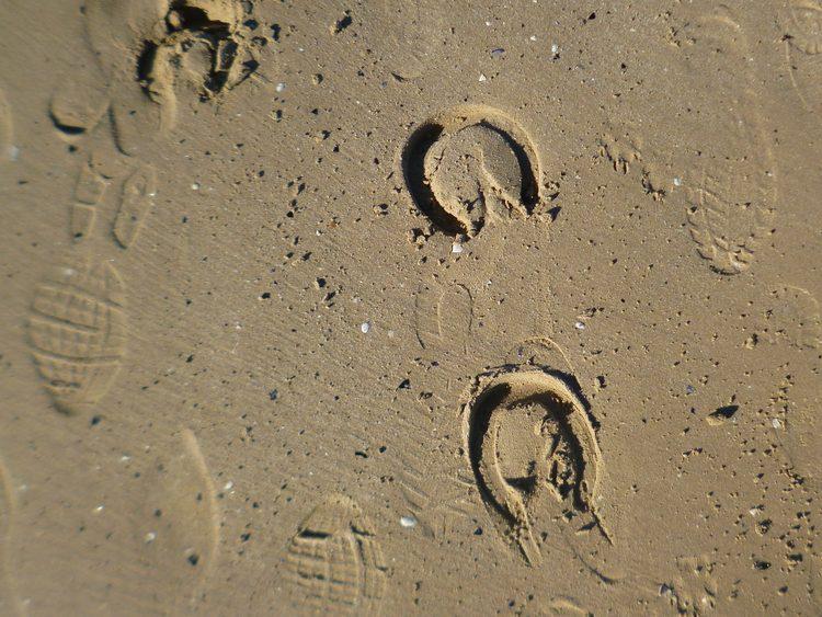 AS moist sand